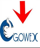 Afectados GOWEX